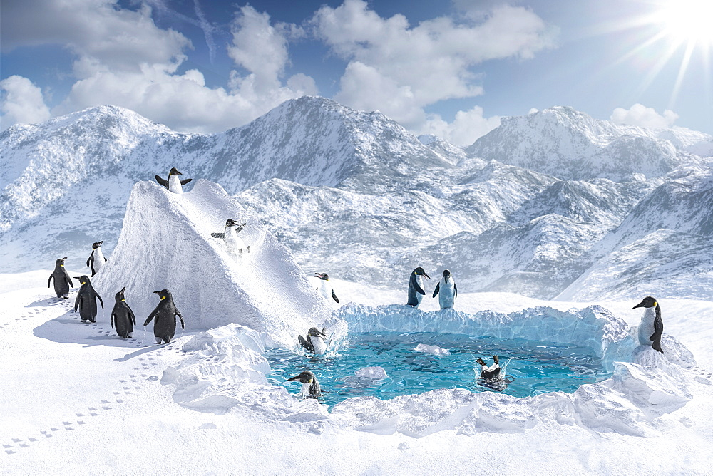 Penguins playing on slide and in pool