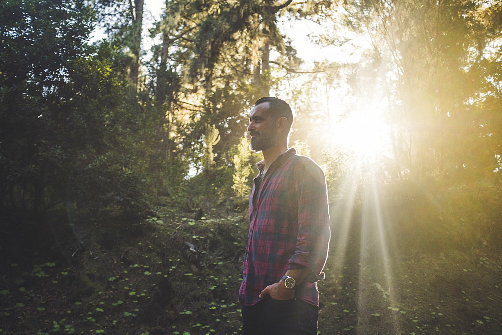 Man standing in sunlight in forest