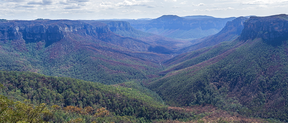 Valley at Blue Mountains National Park in New South Wales, Australia