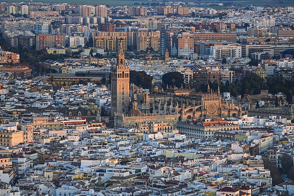 Spain, Andalusia, Seville, High angle view over Giralda Tower and Cathedral of Seville