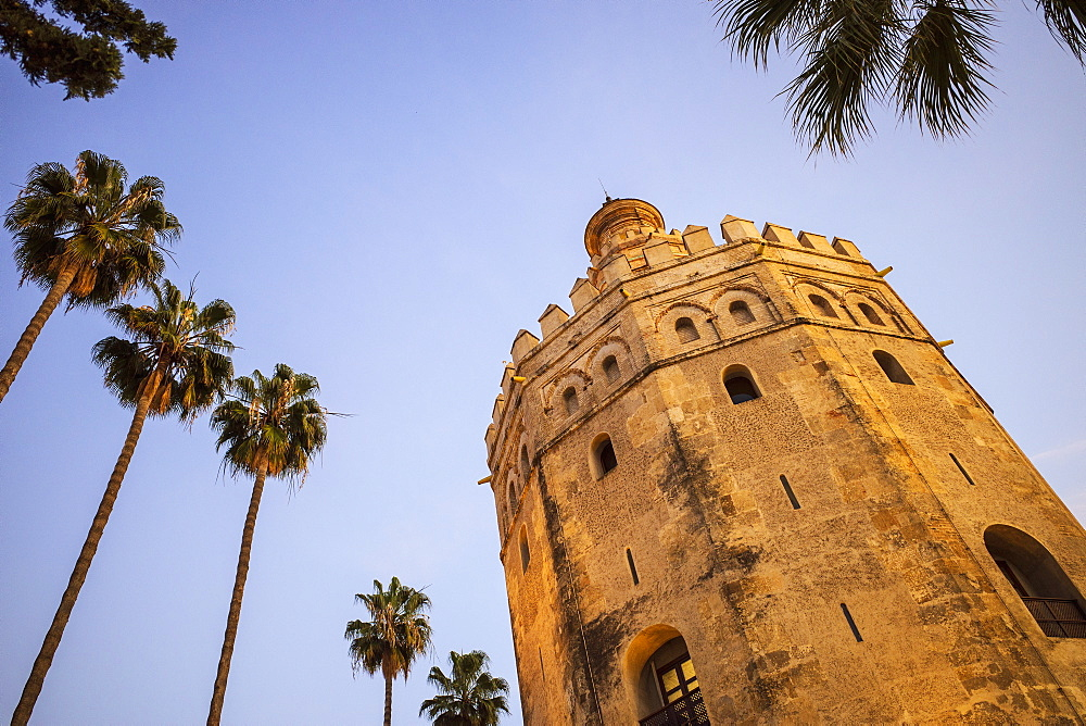 Spain, Seville, Torre Del Oro, Low angle view of Torre del Oro and palm trees