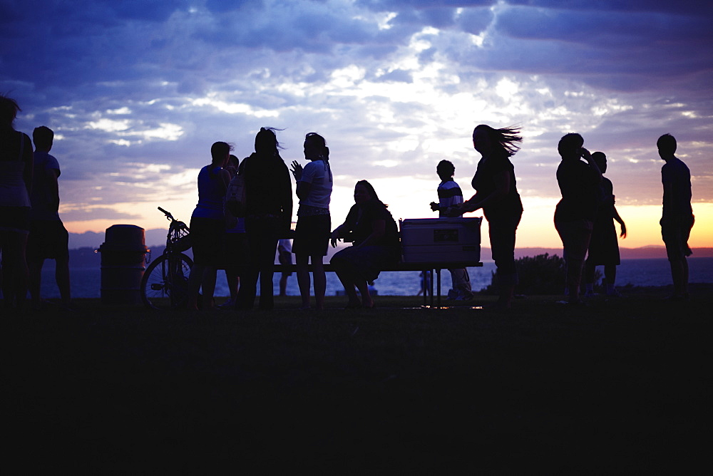Silhouettes of people during party at twilight