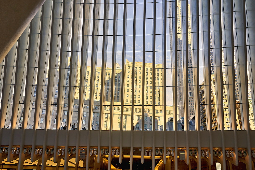 USA, New York, New York City, Modern buildings reflected in glass facade