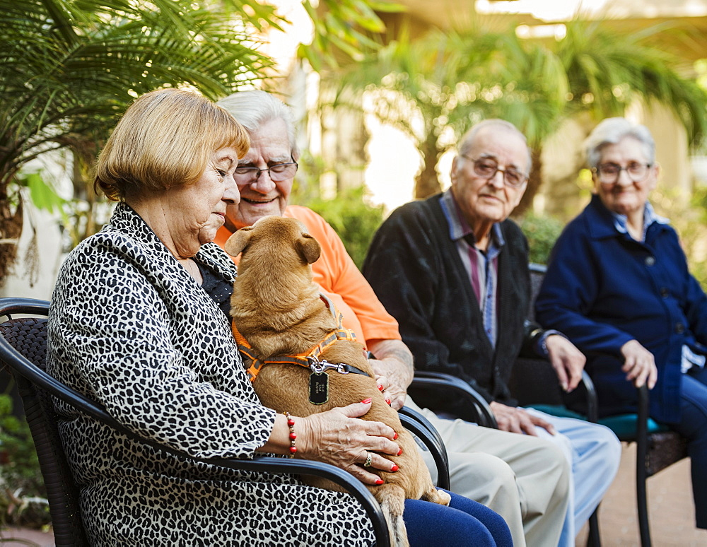 Senior people sitting in chairs and holding service dog