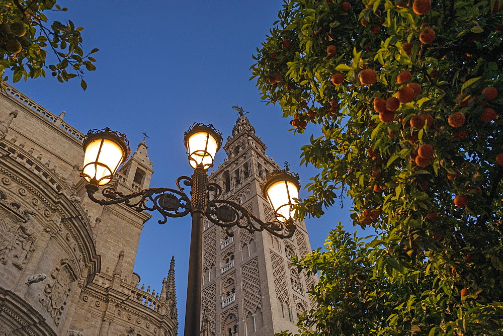 Spain, Seville, Low angle view of Giralda Tower and Seville cathedral at dusk