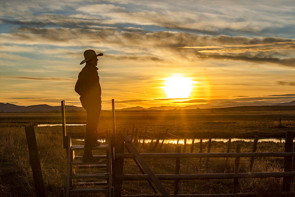 USA, Idaho, Bellevue, Cowboy standing on fence at sunset