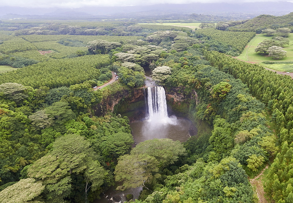 USA, Hawaii, Kauai, Waterfall in forest