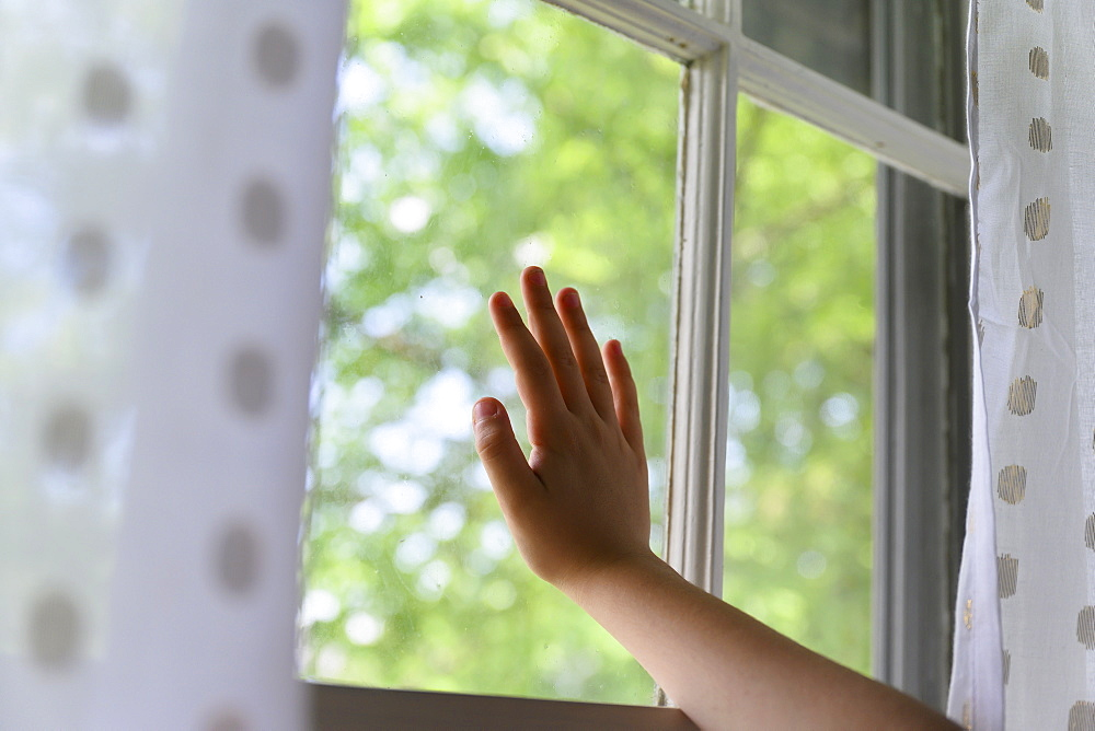 Child's hand touching window with trees behind