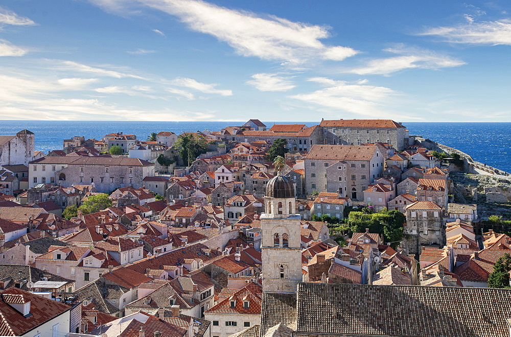 Croatia, Dubrovnik, Elevated view of old town