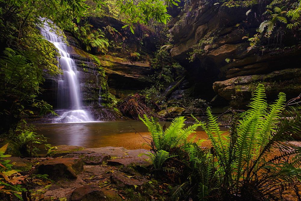 Australia, New South Whales, Blue Mountains National Park, Waterfall in Blue Mountains National Park - 1178-30602