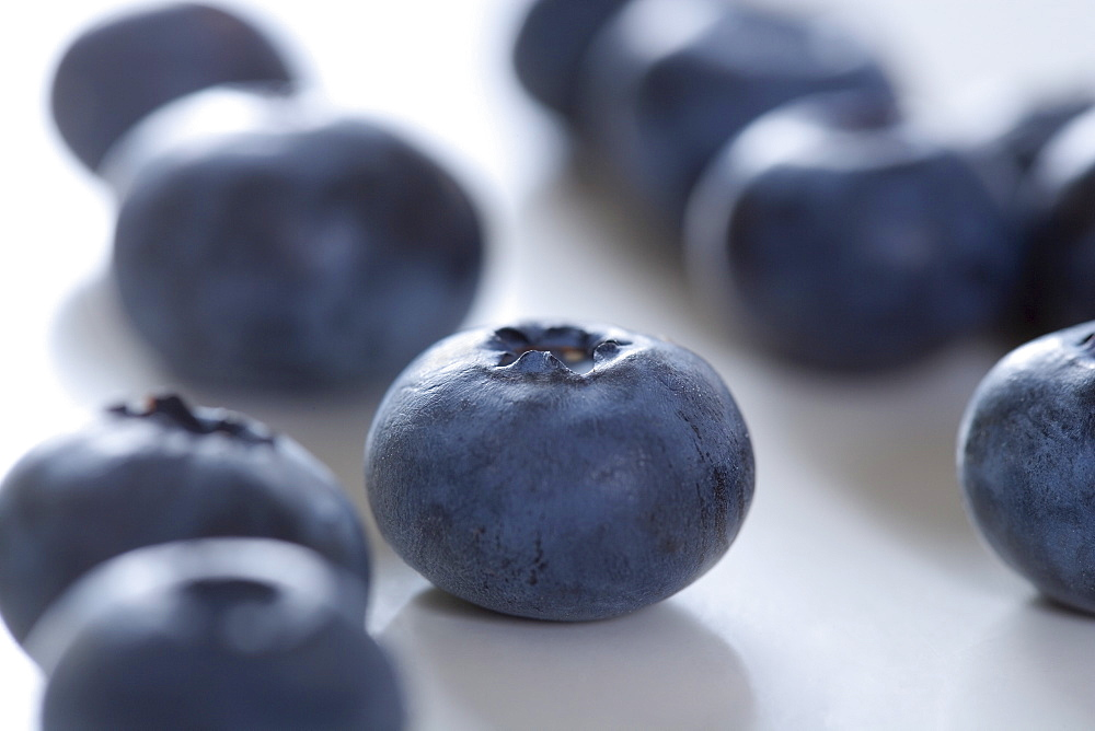 Still life of blueberries