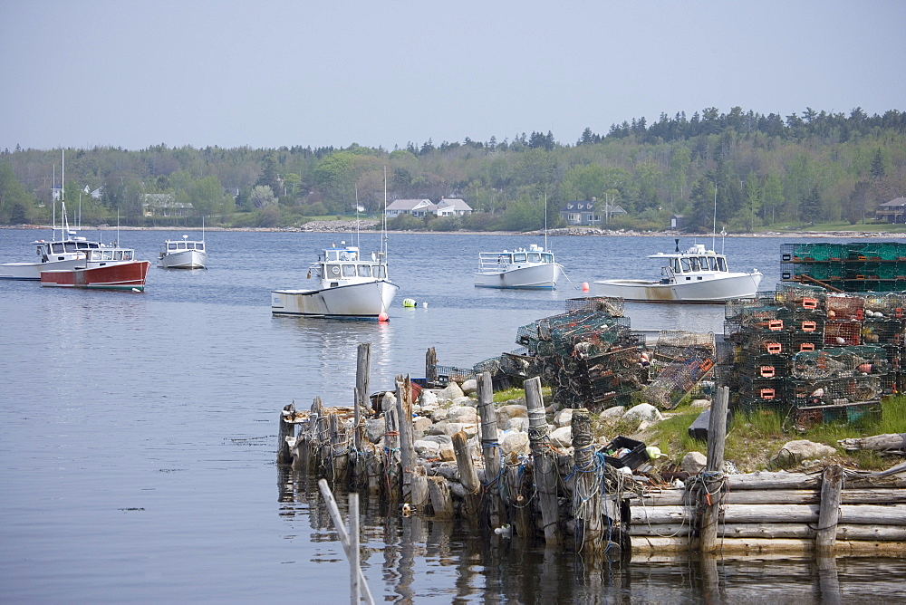 Lobster boats moored along the Maine coast