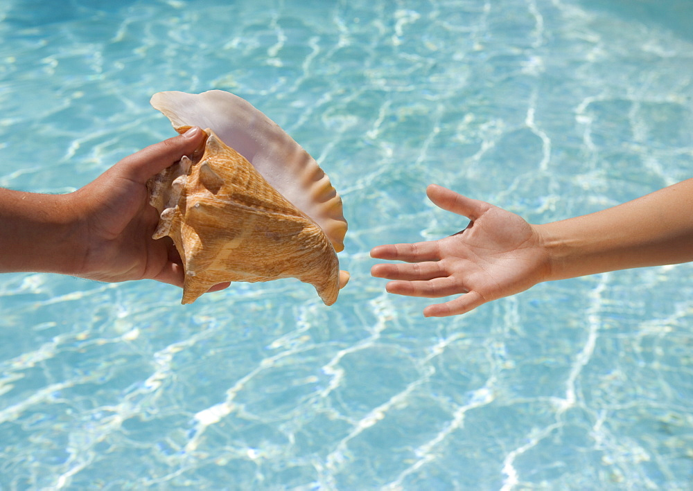 Giving conch shell to someone - 1178-3328