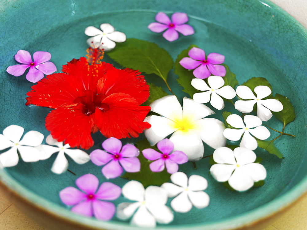 Bowl with floating flower heads
