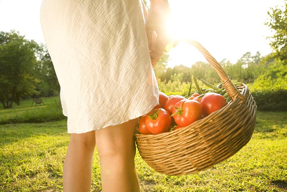 Woman holding basket of fresh tomatoes