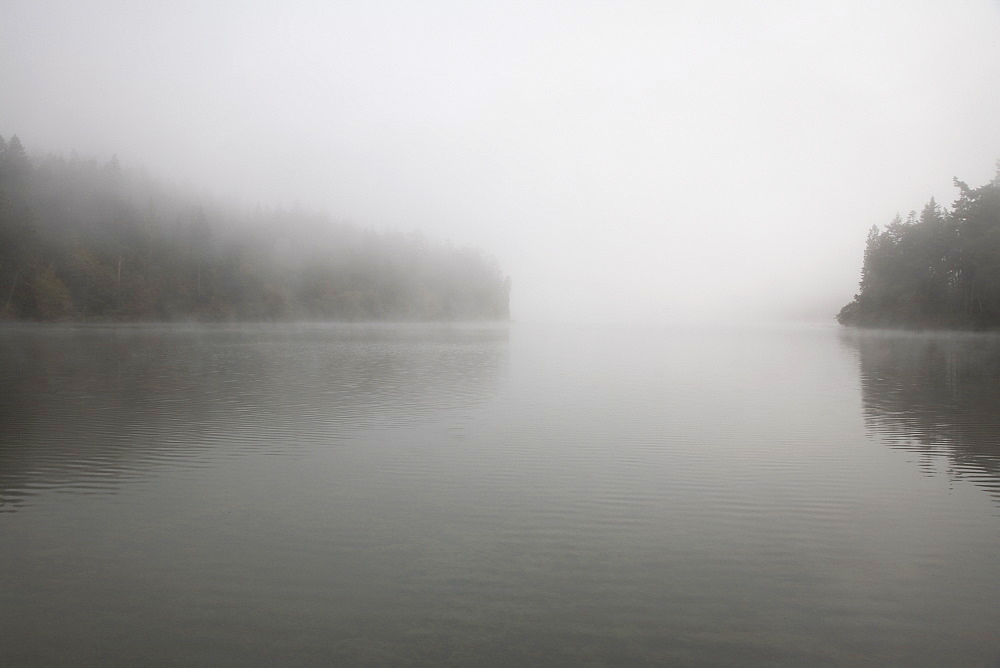 Foggy lake scene