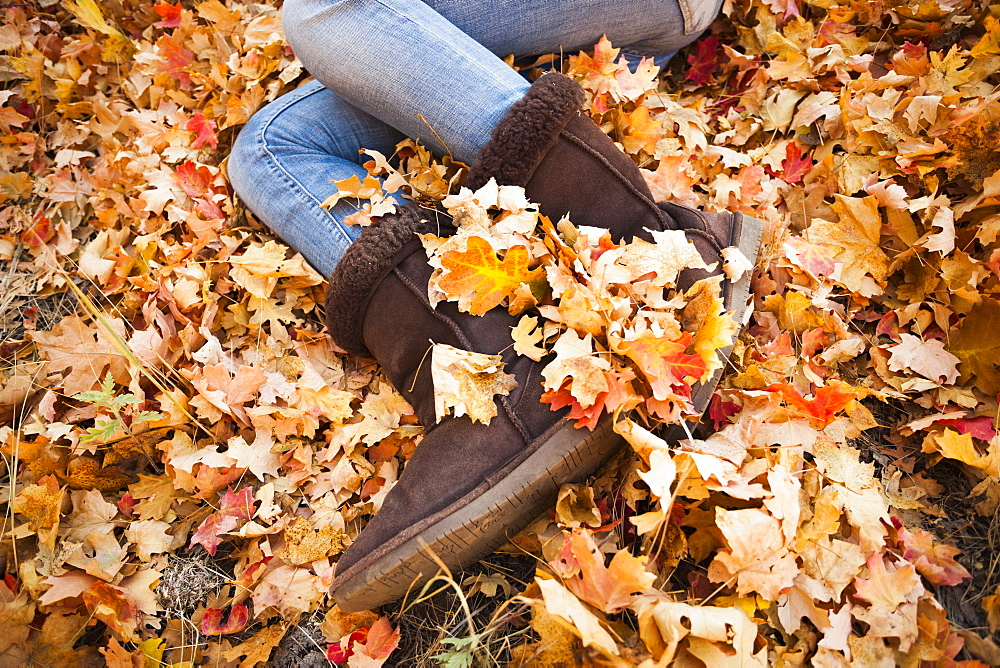 Legs of young woman lying on autumn leaves - 1178-5220