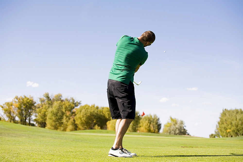 Rear view of man hitting ball on golf course, Colorado, USA