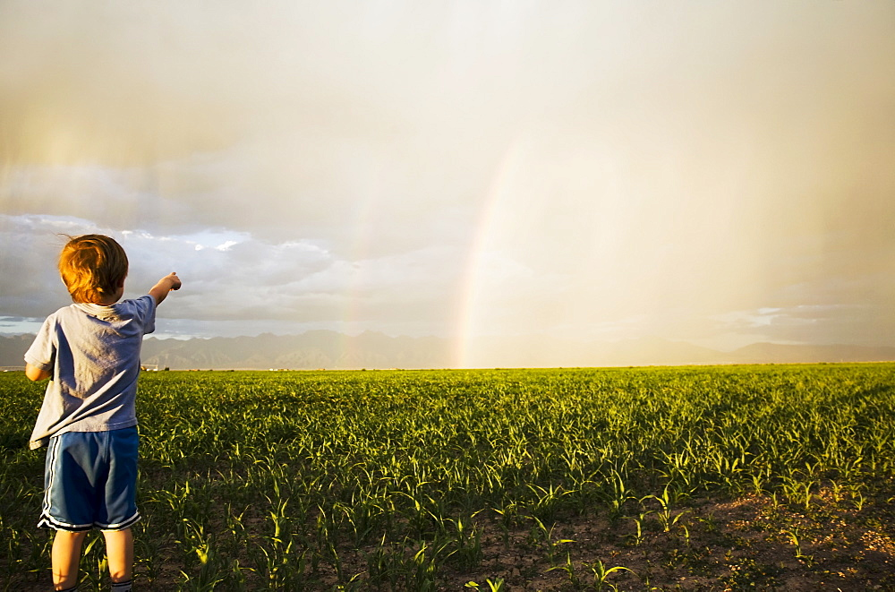 Boy (2-3) in field pointing at rainbow, Colorado, USA