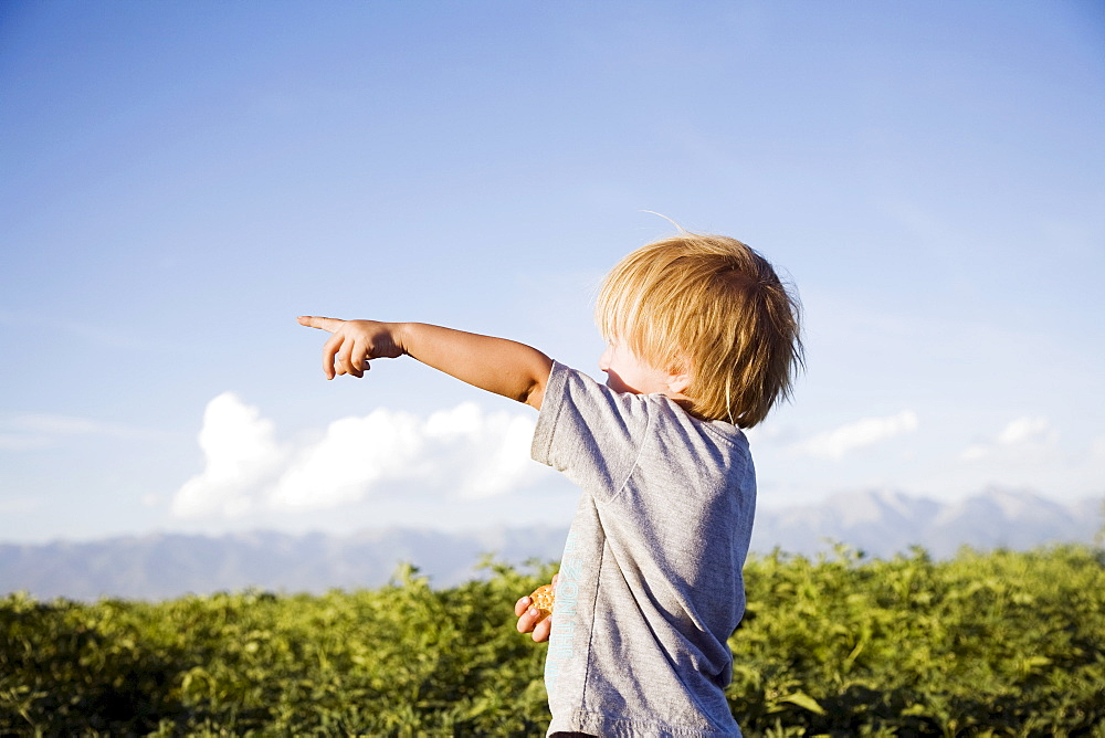 Toddler boy (2-3) pointing in field, Colorado, USA