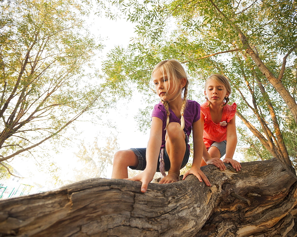 Two little girls (4-5, 6-7) climbing on horizontal tree branch, Lehi, Utah