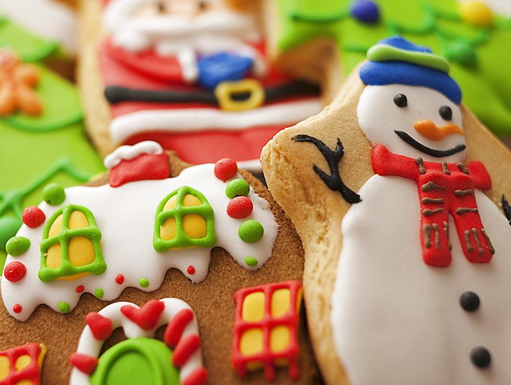 Studio Shot of gingerbread cookies