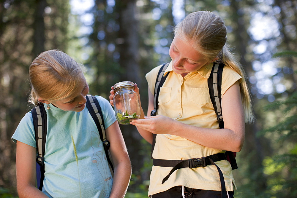 Canada, British Columbia, Fernie, two girls examining animal closed in jar