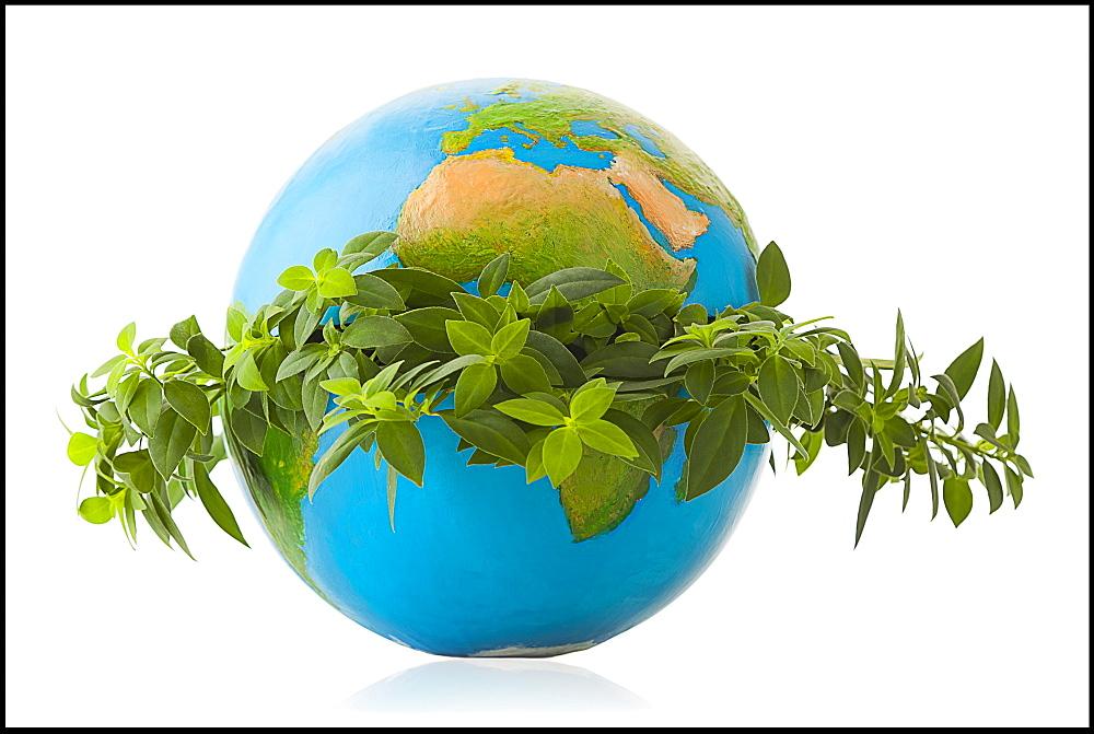 Globe in wreath of fresh leaves