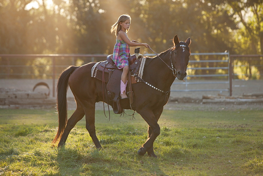 Girl (8-9) riding horse in paddock