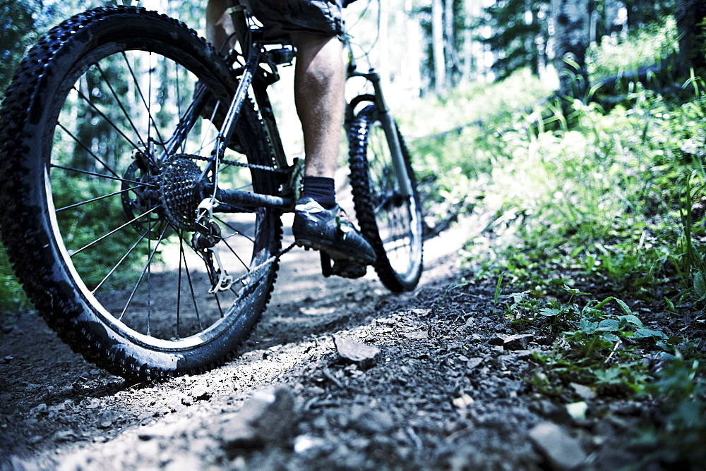 Man mountain biking in forest