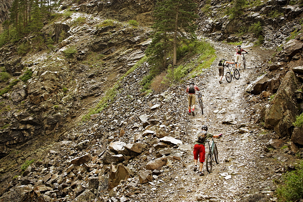 Mountain bikers pushing bikes up hill