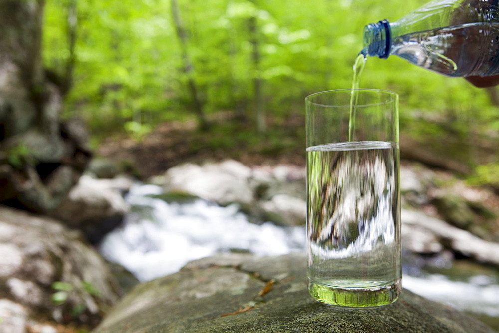 Bottled water being poured into a glass in the woods