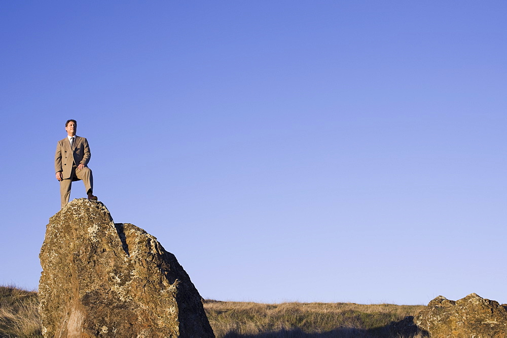 Businessman standing on rock
