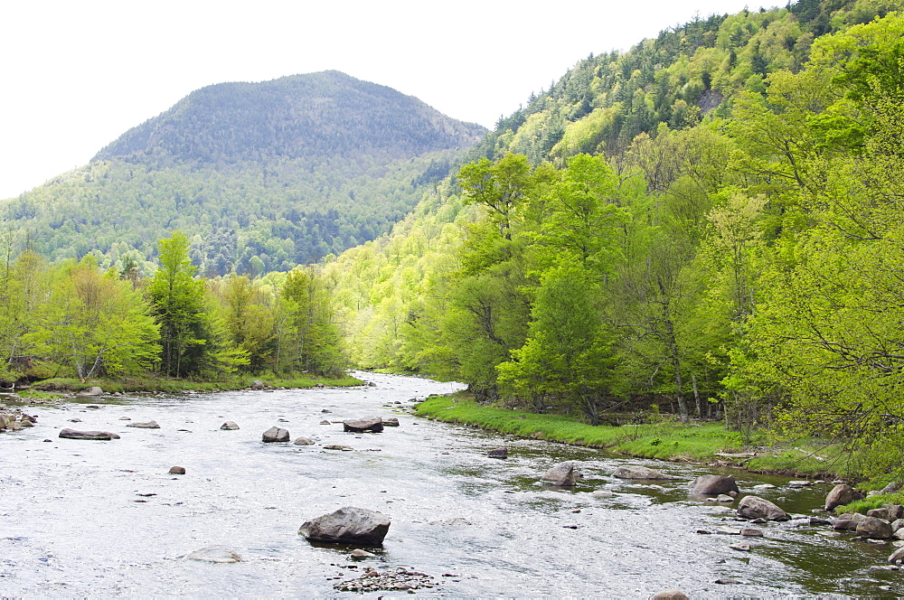 River in mountains, USA, New York State, Wilmington