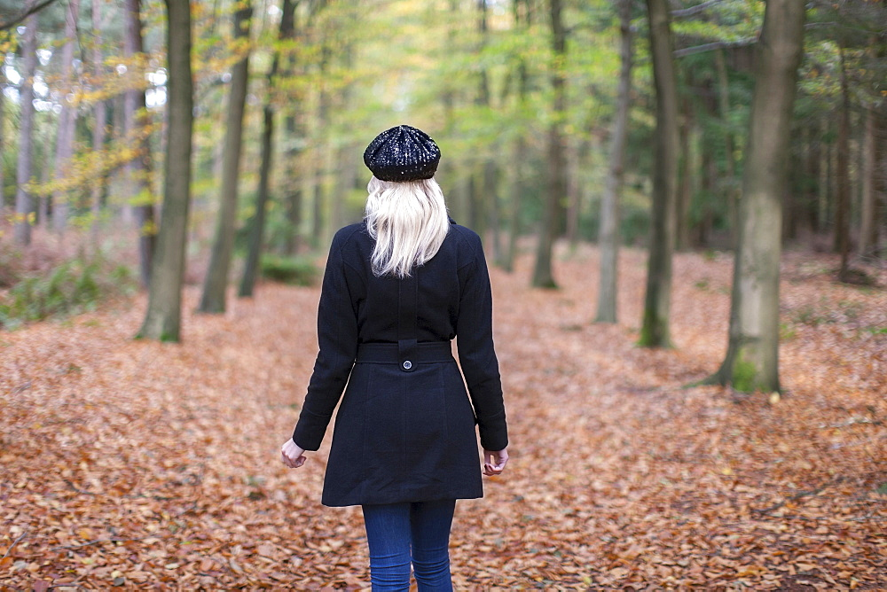 Rear view of woman in autumn forest, Goirle Netherlands