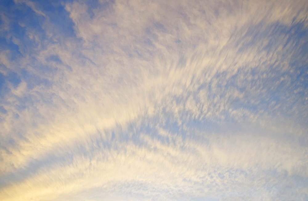 Cirrocumulus clouds in yellow light of setting sun