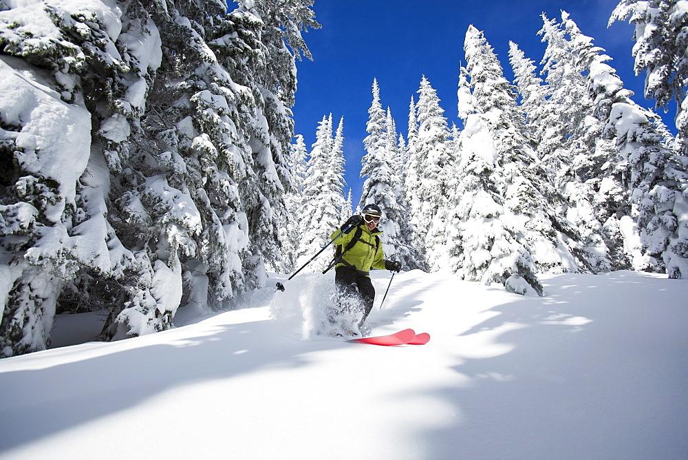 Woman skiing, USA, Montana, Whitefish