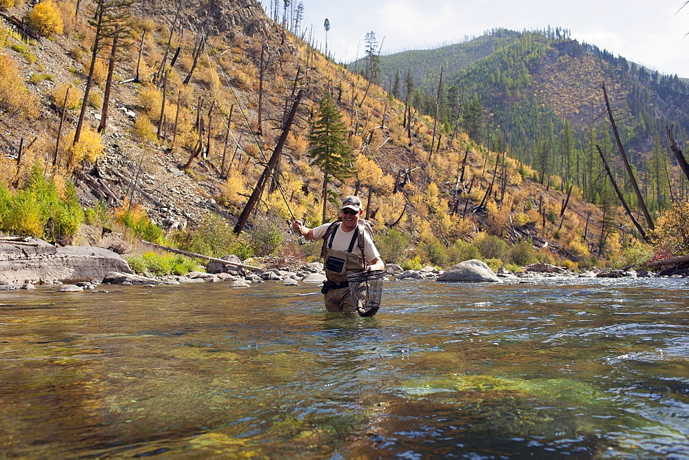 Fisherman wading in river, North Fork Blackfoot River, Montana, USA