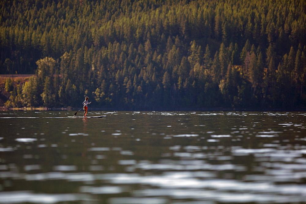 Woman paddleboarding on lake, USA, Montana, Whitefish, Whitefish Lake