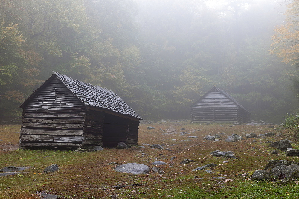 Sheds in foggy glade, Smoky Mountains Nationa Park, Tennessee