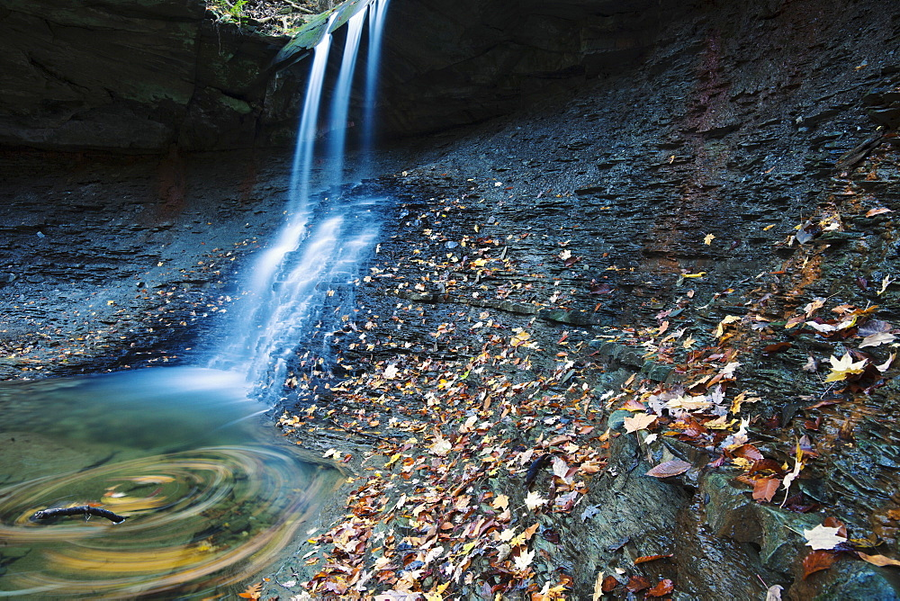 Small waterfalls in forest, Cleveland, Ohio