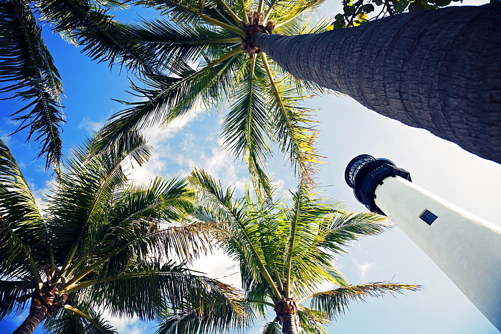 USA, Florida, Key Biscayne, Lighthouse with palm trees