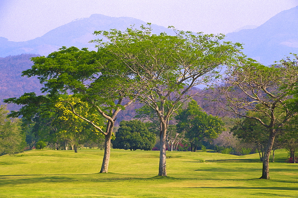 Mexico, Oaxaca, Huatulco, Tangolunda Bay, golf course