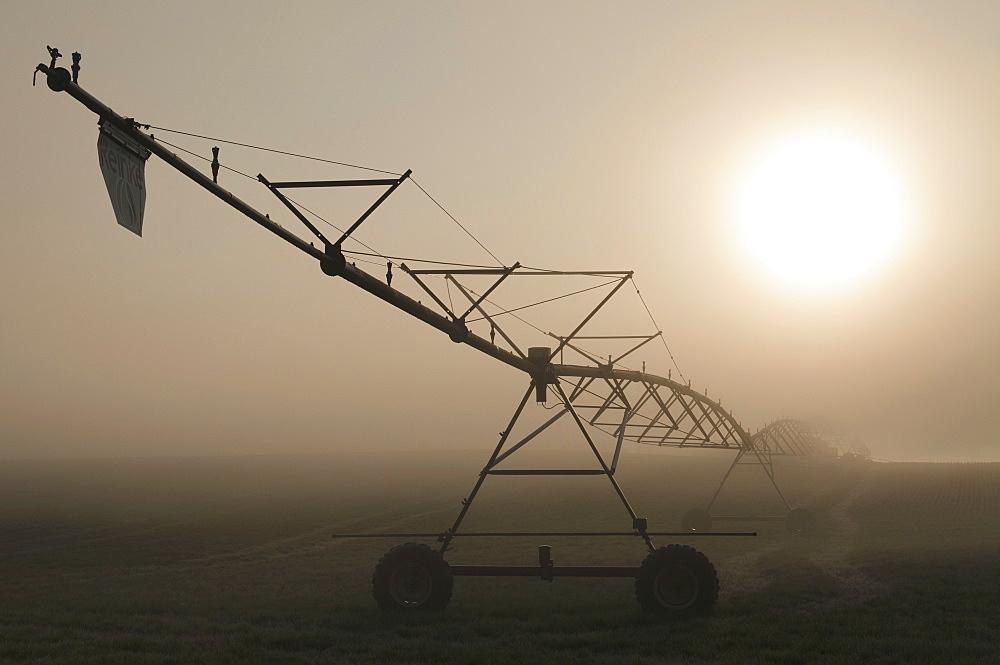 USA, Oregon, Marion County, Irrigation and fog