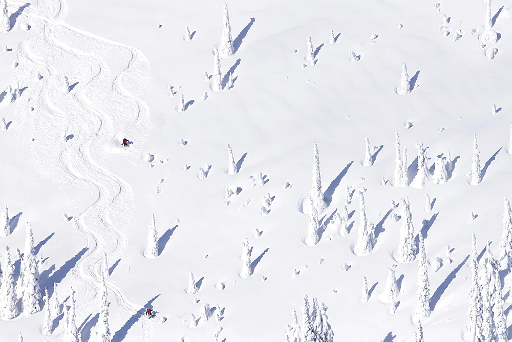 USA, Montana, Whitefish, aerial view of skiers on slope