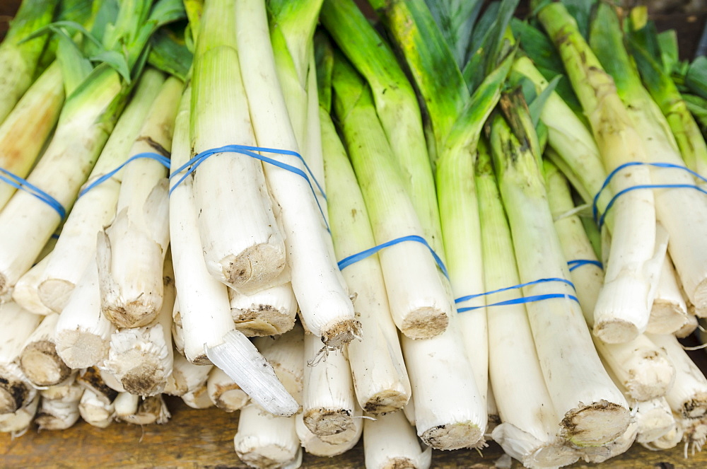 Bunches of leeks - 1178-859
