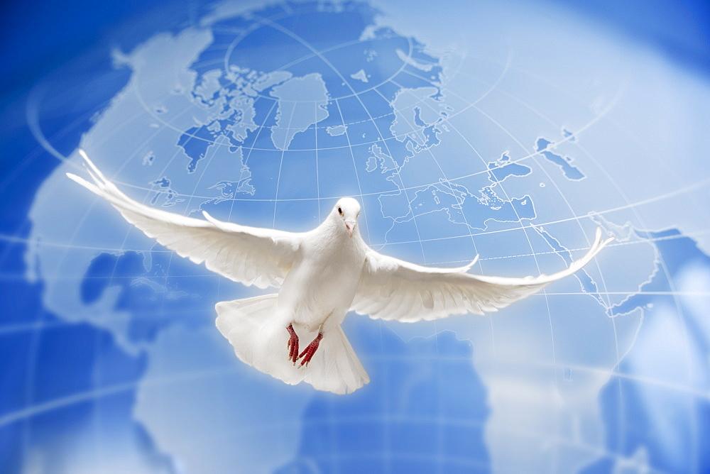 Dove flying globe in background