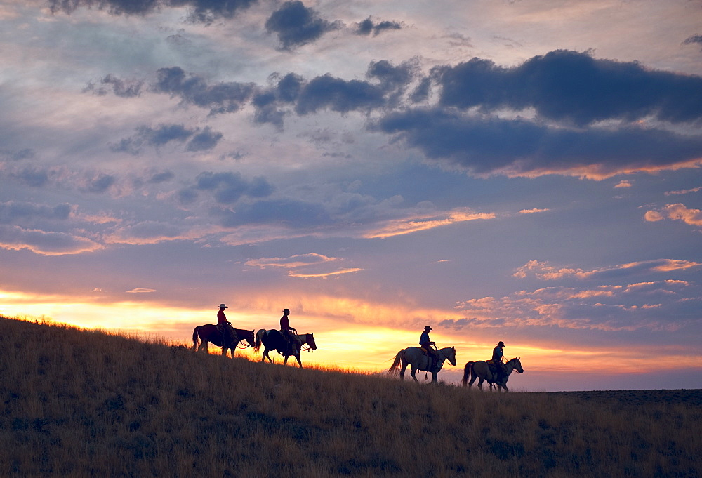 Horseback riders at sunset