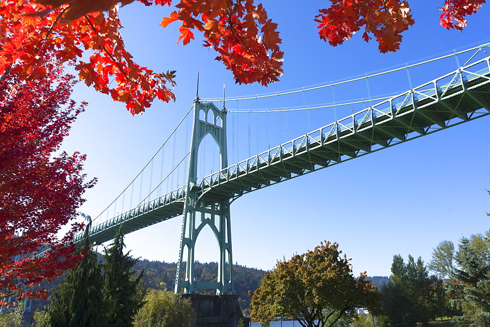 Overlooking bridge in autumn scenery, USA, Oregon, St Johns