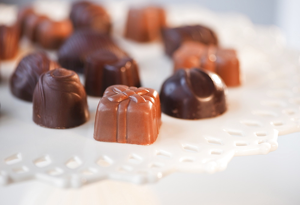 Selection of chocolates, studio shot
